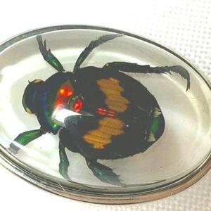 Rare TATEOSSIAN Trapped Beetle Tie Tack